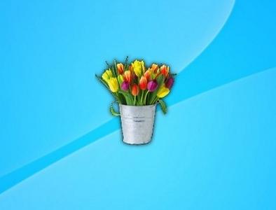 gadget-belle-tulip-flowers.jpg