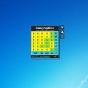 gadget-binary-uptime-2.jpg