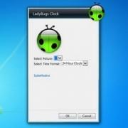 gadget-ladybugs-clock-setup.jpg