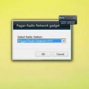 gadget-pagan-radio-setup.jpg
