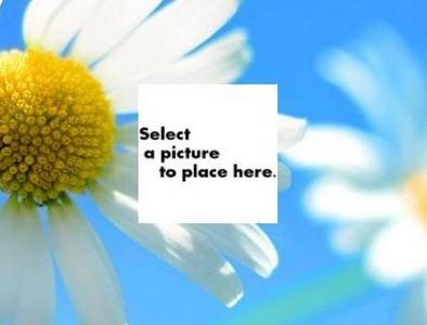 gadget-picture-gadget.jpg