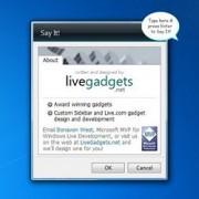 gadget-say-igadget-setup.jpg