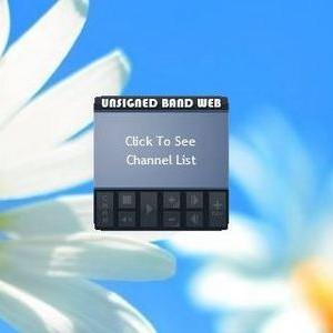 gadget-unsigned-band-web-radio-gadget.jpg