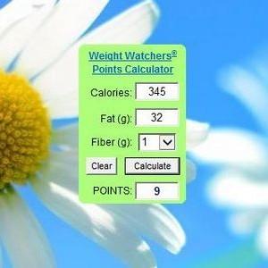 gadget-weighgadget-watchers-points-calculator-10.jpg