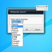gadget-wikipedia-search-setup.jpg